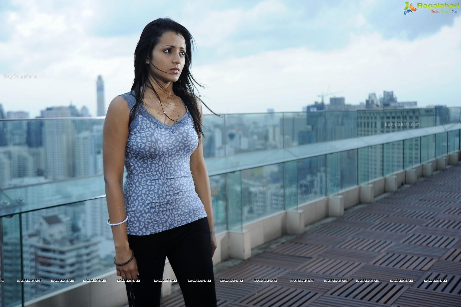 Trisha Krishnan - Samar Movie Wallpapers Hd - Sabwoodcom-7630