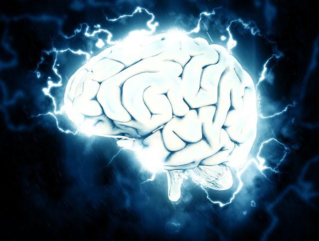 El cerebro no utilizado