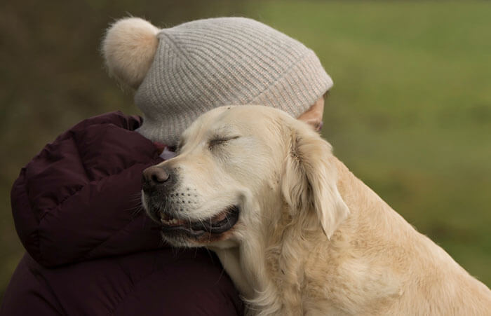 These Are The Dog Photographer of the Year 2018 Winners: 40 Photographs Every Dog Lover Will Fall For