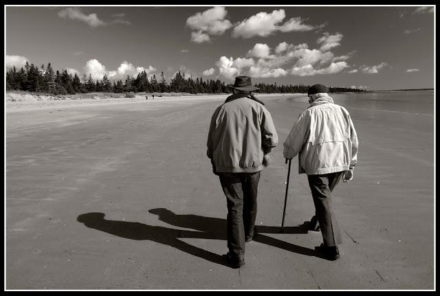 Nova Scotia; Portrait; Risser's Beach