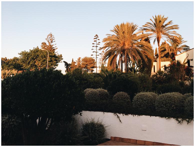 Conil de la Frontera, Andalusia, Spain