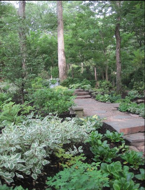 planting under large trees steps sloped yard