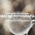Fotografia macro rocio