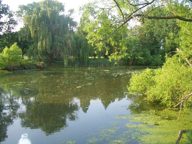 Extreme Philly Fishing: Exploring the Meadow Lake (FDR Park) in