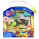 Littlest Pet Shop Postcard Pets Turtle (#1009) Pet