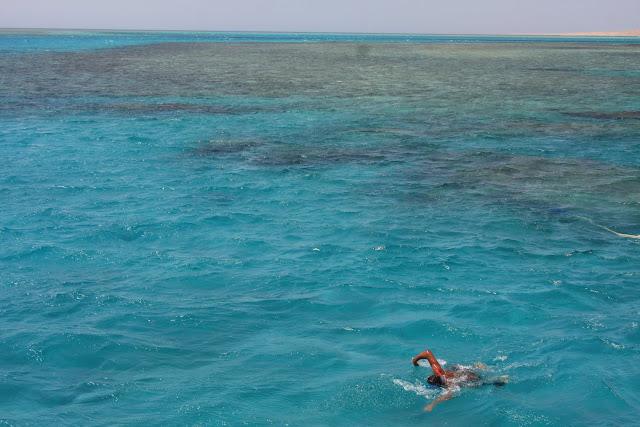VISITAR HURGADHA  e explorar o incrível o Mar Vermelho | Egipto