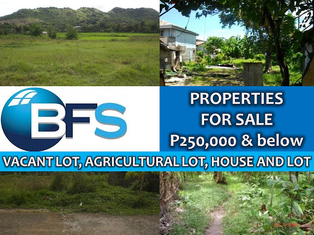 Looking for properties to buy or for investment? Here are properties for sale from Bayan Financial Services (BFS). They have properties that are affordable. In this post, we sort out properties from P250,000 and below. You can choose from house and lot, vacant lot or an agricultural lot for sale this month of March 2017.