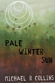 Pale Winter Sun by Michael R. Collins