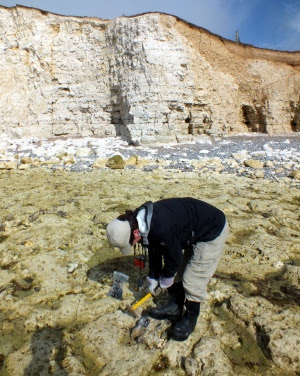 Coastal erosion study could hold valuable lessons for climate change mitigation