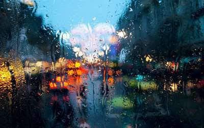Chiều mưa đất khách
