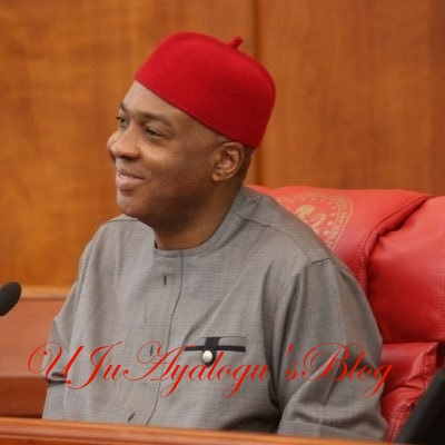 How Saraki will be removed – Senator Boroffice