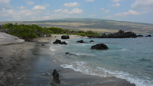 Urbina Bay Galapagos tide