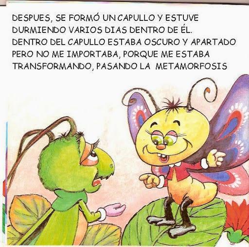 Cuentos Infantiles La Mariposa Y El Grillo Metamorfosis Del Gusano