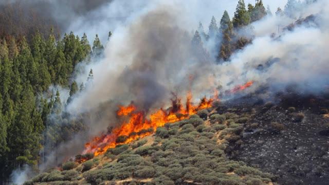 Υψηλός ο κίνδυνος πυρκαγιάς στην Αργολίδα και την Παρασκευή 31 Ιουλίου