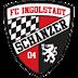 Daftar Skuad Pemain FC Ingolstadt 04 2016-2017