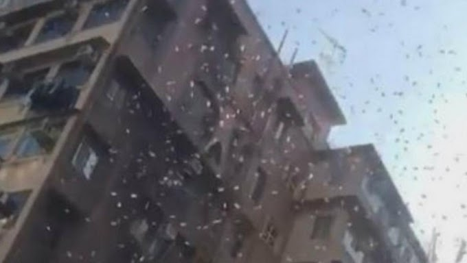 Hujan uang di kawasan miskin Hongkong membuat Masyarakat Menggila