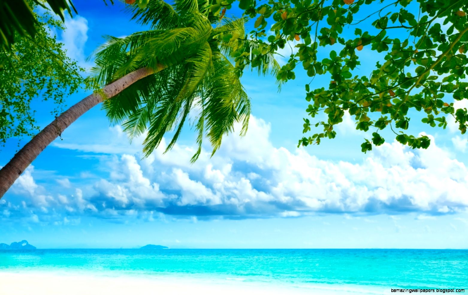 Hd Tropical Island Beach Paradise Wallpapers And Backgrounds: Tropical Wallpaper Widescreen
