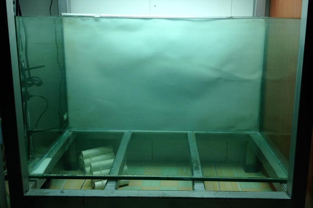cách làm 1 hồ thủy sinh nuôi tép su la - chuẩn bị hồ kiếng