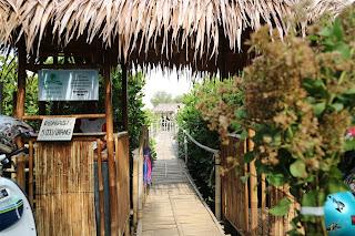 Mangrove edupark