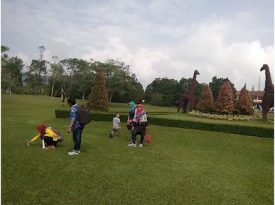 jerapah Taman Bunga Nusantara