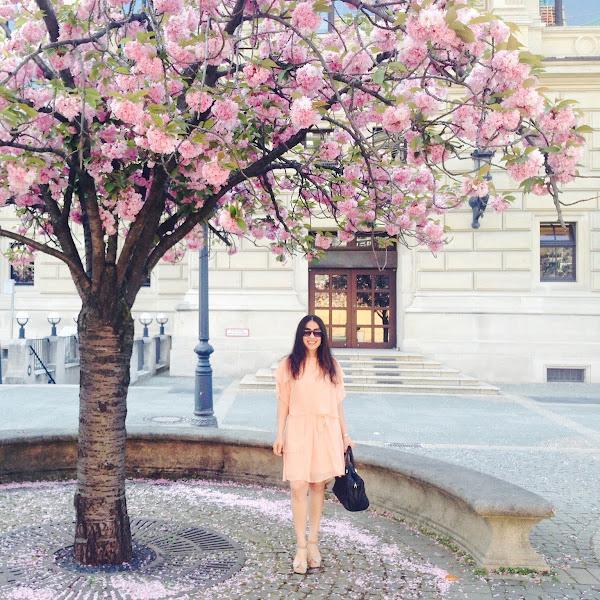 Trendfarbe Rosa und die neuen Cocktailkleider für Frühjahr/Sommer 2019