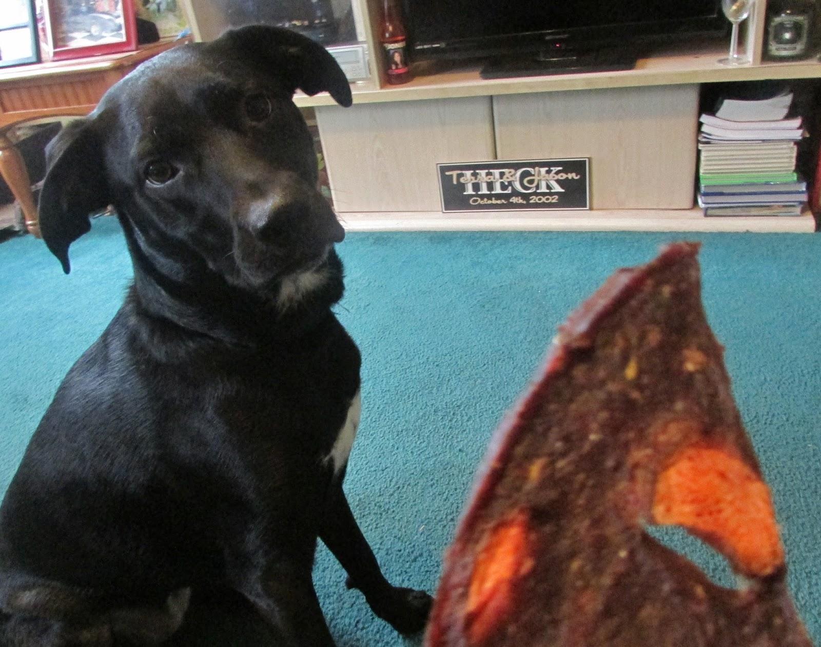 Healthiest Dog Treats Reviews