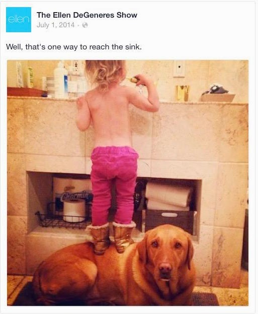 Ellen DeGeneres got some flack for this picture of her kid standing on her dog