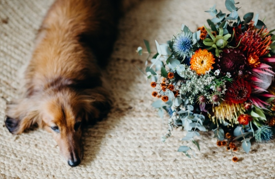 SARAH JANE PRINCE PHOTOGRAPHY GOLD COAST FLORAL DESIGNER FLOWERS BLOOMS WEDDINGS