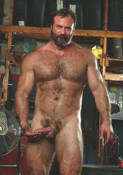 Male bear porn