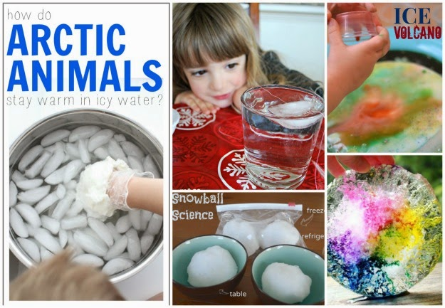 20 AMAZING Winter experiments for kids. So many fun ideas I can't wait to try them all!