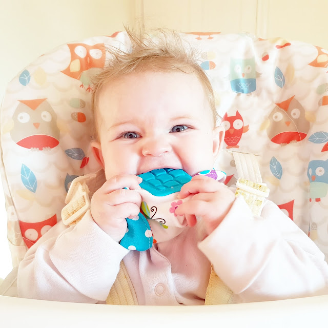 From Bottle to Bowl | Our Weaning Journey with a Little Help from Nuby