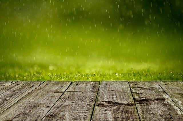 Fakta Menarik Tentang Hujan