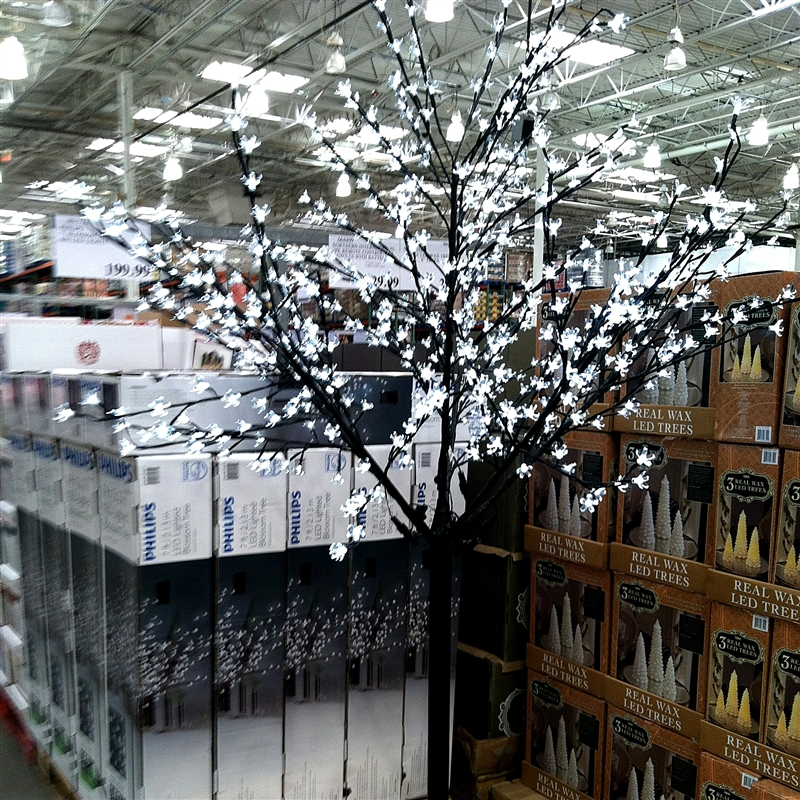 """Costco Led Christmas Tree: Capadia Designs: Old Friends And A """"find"""" At Costco"""