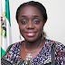 """VAIDS IS AIMED AT CORRECTING NIGERIA'S POOR TAX TO GDP RATIO"" – Finance Minister"