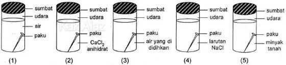 Eksperimen tentang perkaratan pada paku, paku dimasukkan ke dalam tabung tertutup yang berisi berbagai cairan