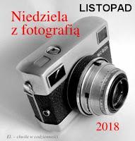 https://misiowyzakatek.blogspot.com/2018/11/niedziela-z-fotografia-listopad.html