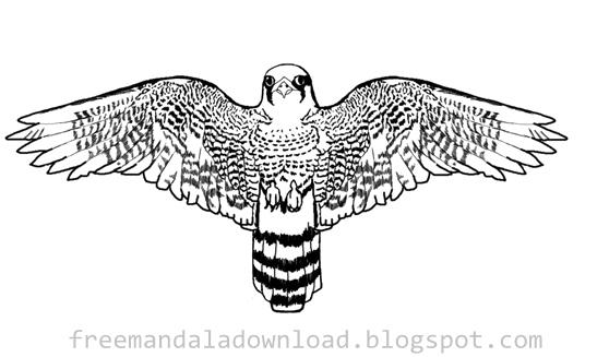 Vogel Mandala Design Download Pdf Bird Mandala Case