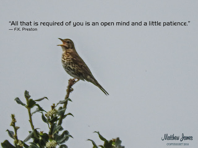 """All that is required of you is an open mind and a little patience."" ― F.K. Preston"