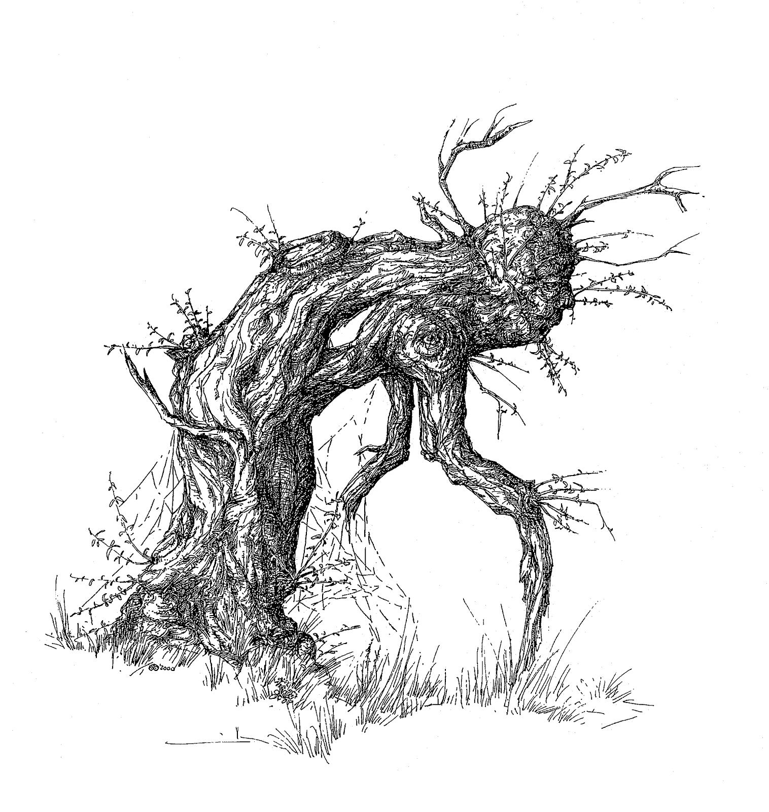 Naturespiritart Gallery Von Baumen Und Menschen