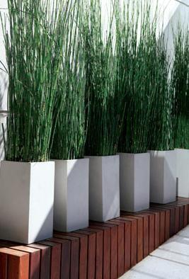 Dwell of decor minimalist designs patios and gardens for 500 decoration details minimalism