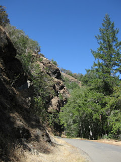 Rock face along the gentle lower section of King Ridge Road, Sonoma County, California