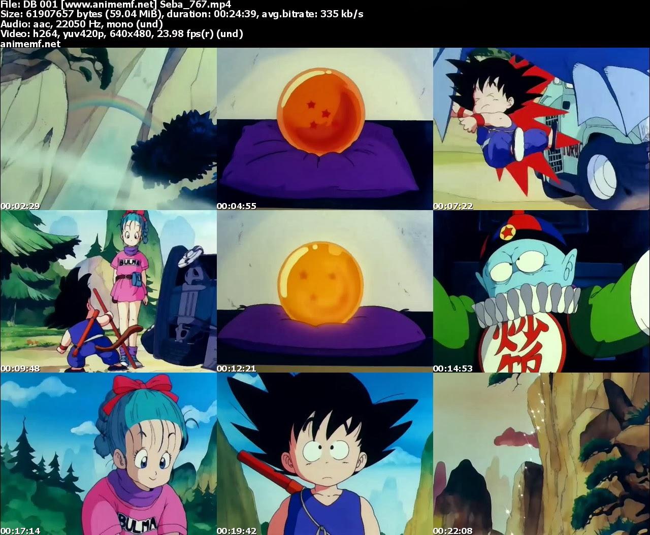 dragon ball, goku, bulma, torneo artes marciales duelo, shen long descargar capitulos episodios completo latino