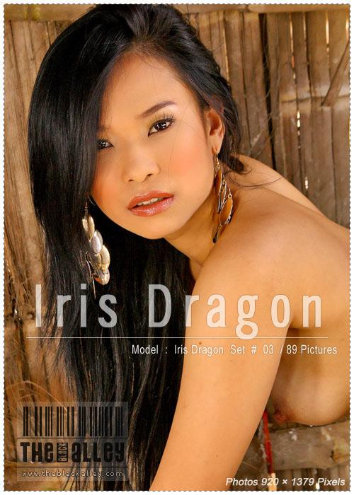 litu 100 archives: Iris Dragon 03