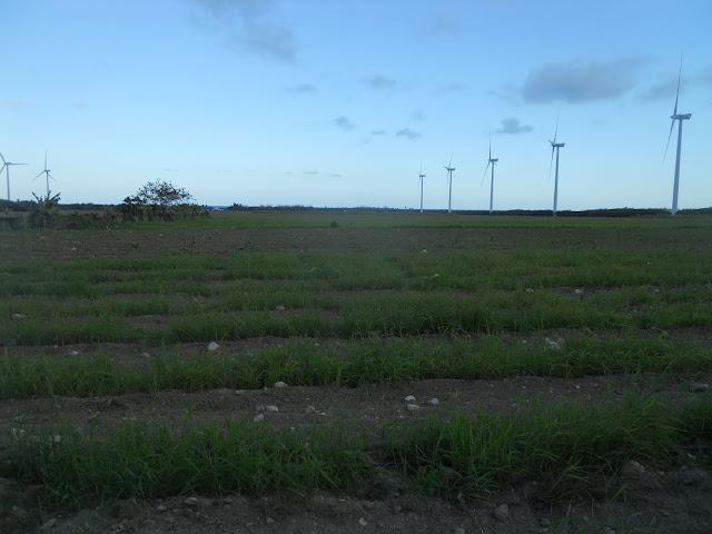 Resultado de imagen para foto terreno del proyecto agropecuario del valle de juancho