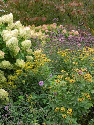 Toronto Botanical Garden Perennial Border Fall Colours by garden muses--not another Toronto gardening blog