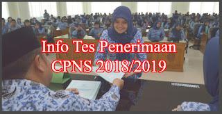 penerimaan cpns 2018 2019