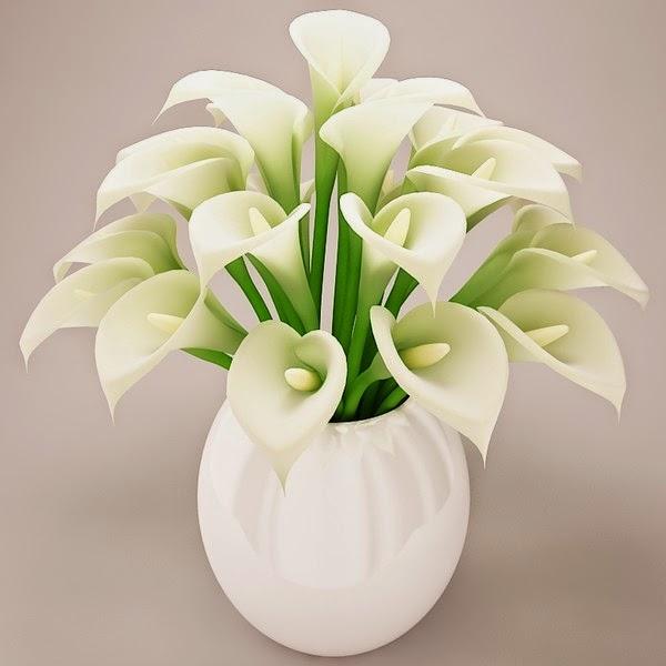 white flowers bouquet fresh flowers