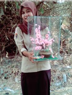 Bonsai Buatan (Bunga Sakura Buatan)
