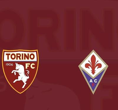 التعادل يحسم مواجهة فيورنتينا و تورينو فى الكالتشيو