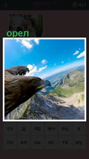 летает орел и под ним расположены горы